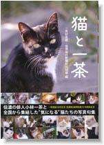 """猫と一茶"""""""
